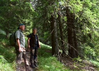 Skúsení praktickí lesníci Peter Šiška (vľavo) a Róbert Gombárik (Foto: Jozef Marko, lesmedium.sk)